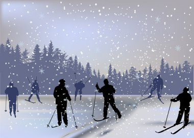 skiers in forest under snowfall