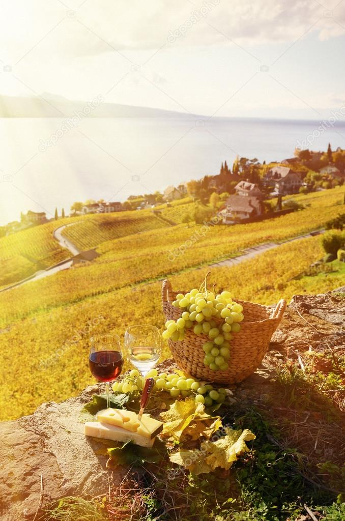 Wine, grapes and cheese in Lavaux