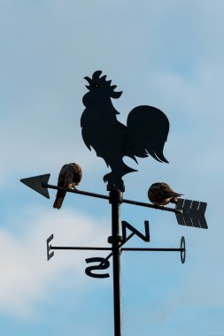 Wind cock