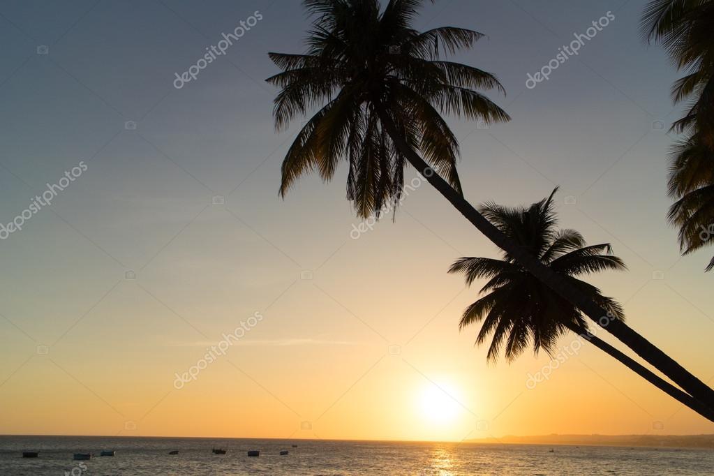 sunset at tropical beach