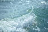 vlny oceánu modré