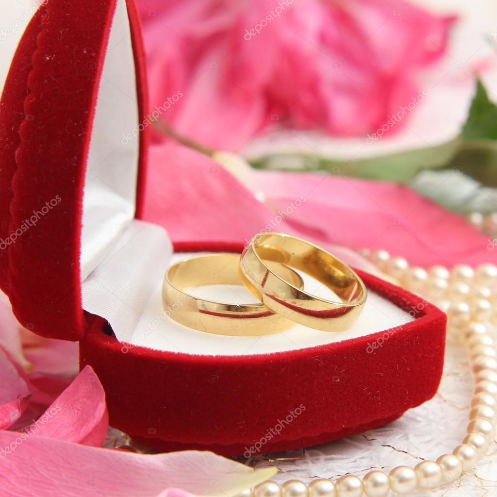 pair of wedding rings with roses for background image — Stock Photo ...