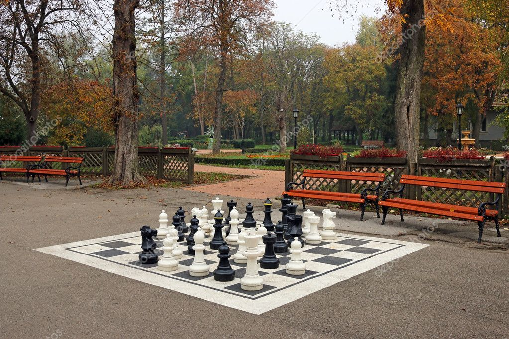 black and white chess figures in park autumn season