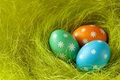 Tři barevné velikonoční vajíčka v hnízdě zelené