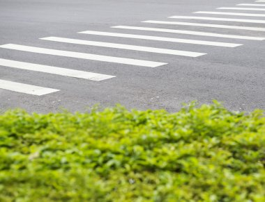 Pedestrian crossing on a road