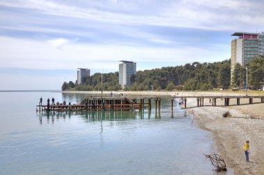 Abkhazia. The resort Pitsunda