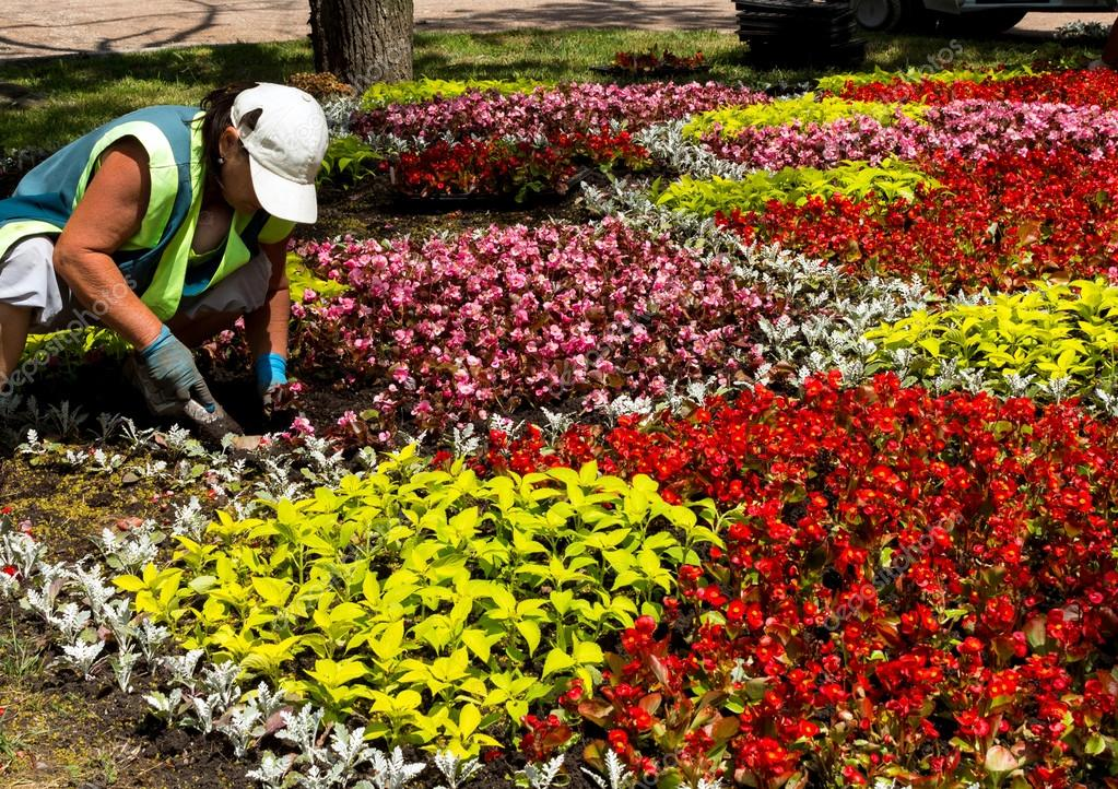 Works on laying of flowerbeds.