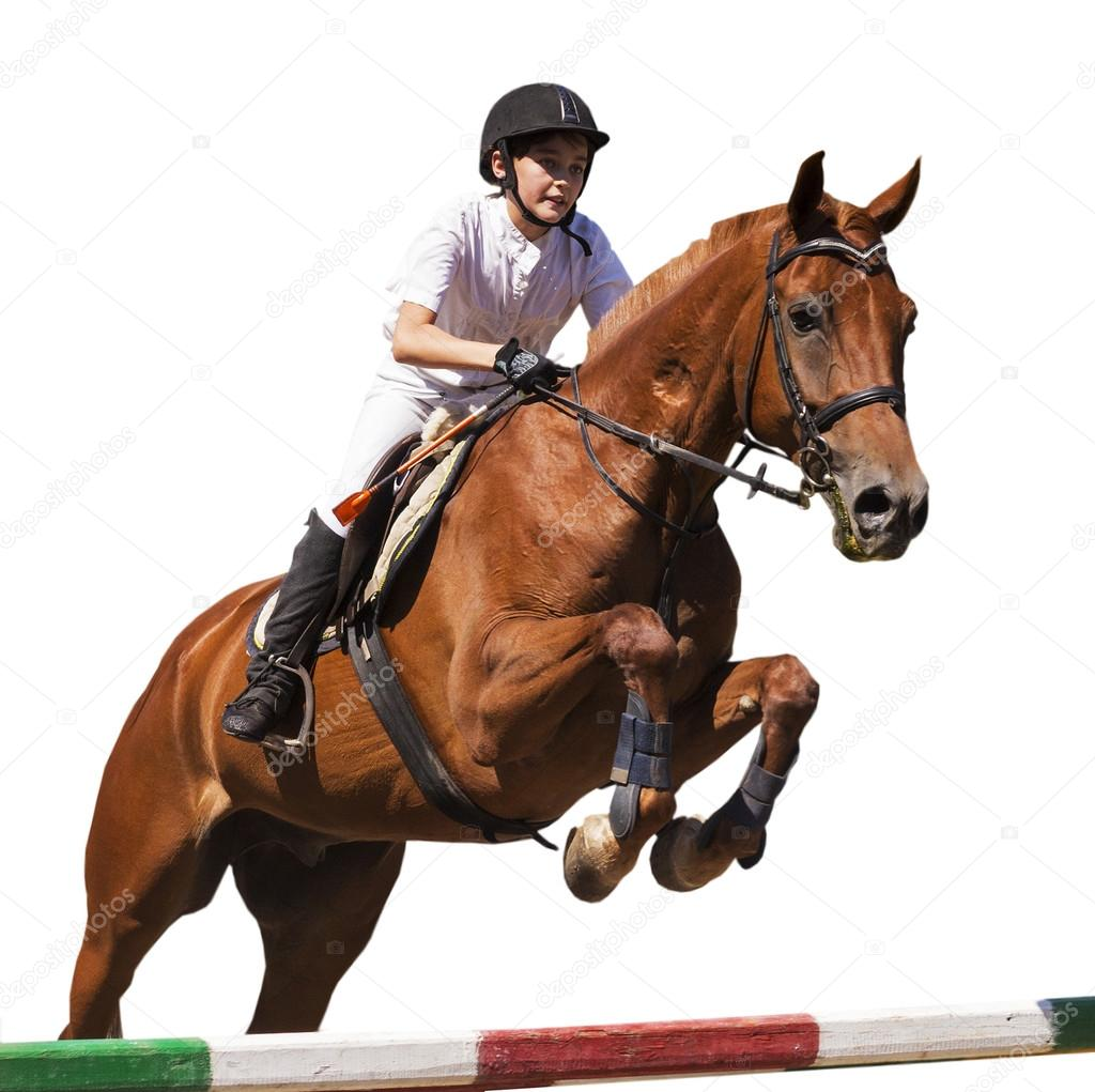 ᐈ Horse Jumping Stock Pictures Royalty Free Jumping Horse Images Download On Depositphotos