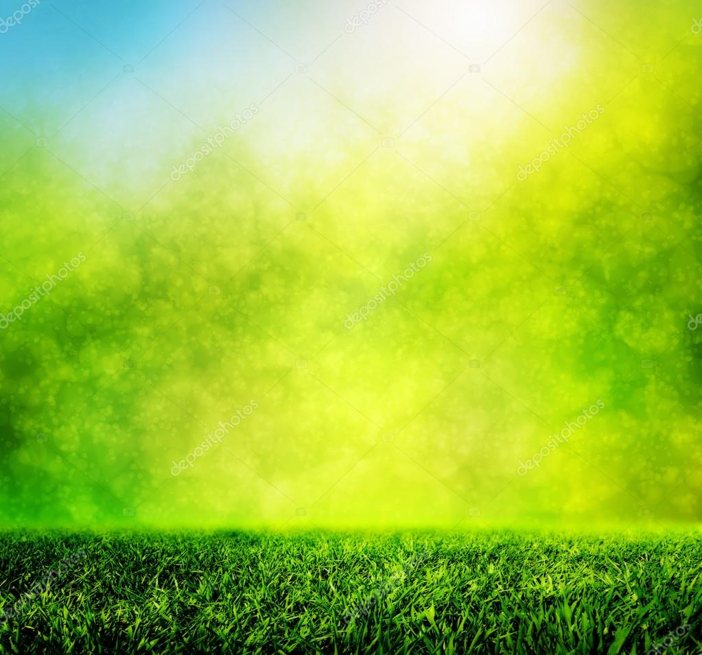 Wallpapers Grass Hd Wallpaper Green Spring Grass In Light Stock Photo C Photocreo 64003863