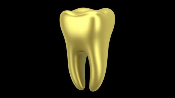 goldene menschliche Zahnschlaufe dreht sich auf schwarzem Hintergrund