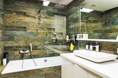 Interior design. Large Bathroom in Luxury Home