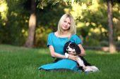 Photo dog  in park