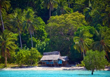 House of Robinson Crusoe. Beautiful island with blue bay and pal