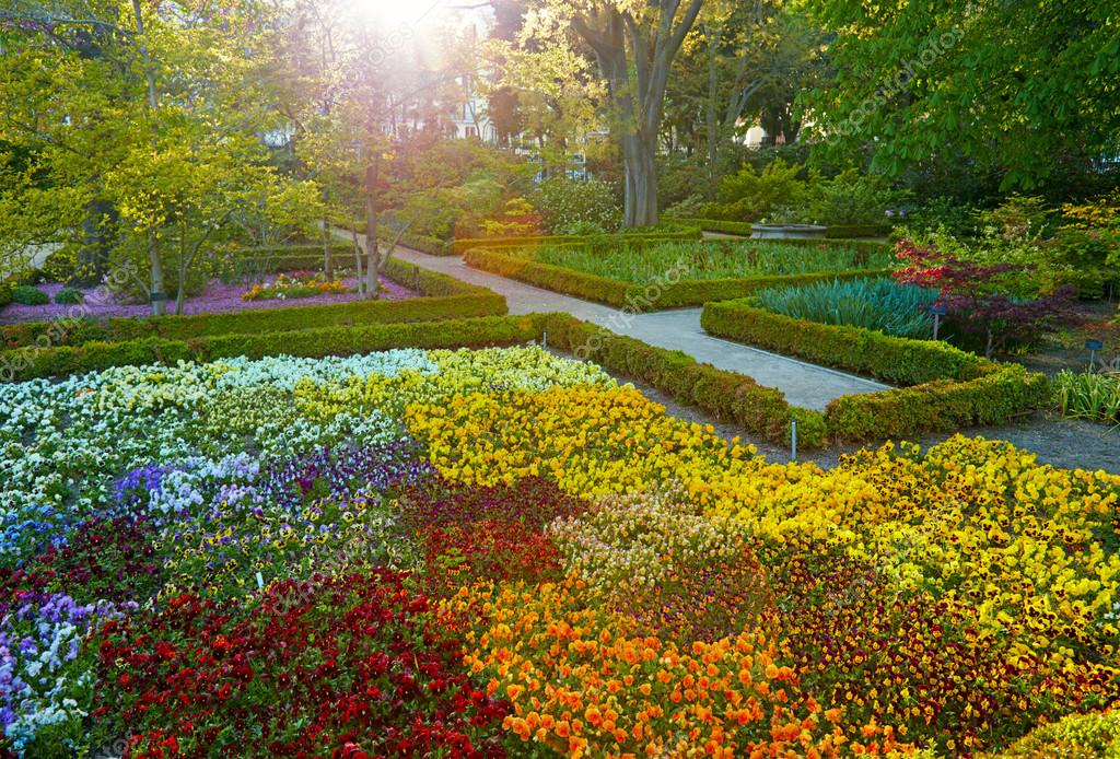 Jard n bot nico de madrid real jardin botanico tiempo for Jardines de madrid
