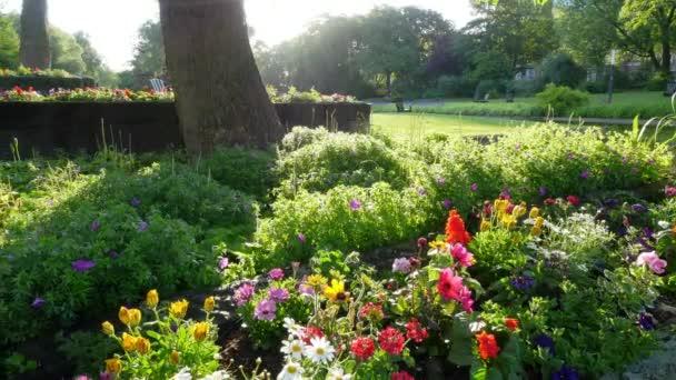 Městský park s krásnými květinami. Posuvné shot