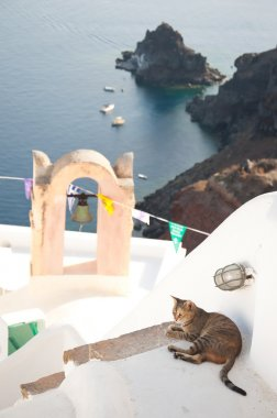 Vintage belfry, cat and seaview in Oia, Santorini, Greece