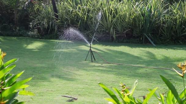 Zalévání zeleně trávníku