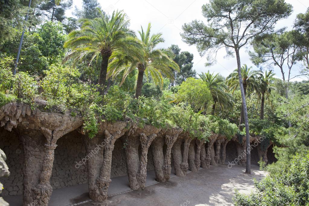 Tropische Pflanzen im Garten. Barcelona — Stockfoto © KKulikov #77978054