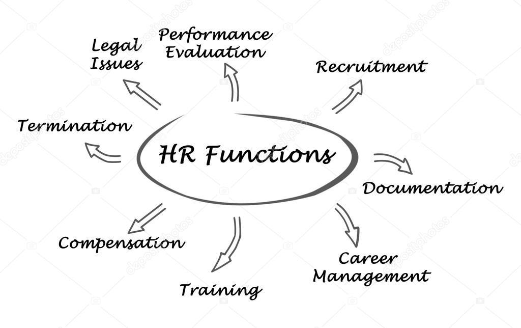diagram of hr functions stock photo vaeenma 101573046