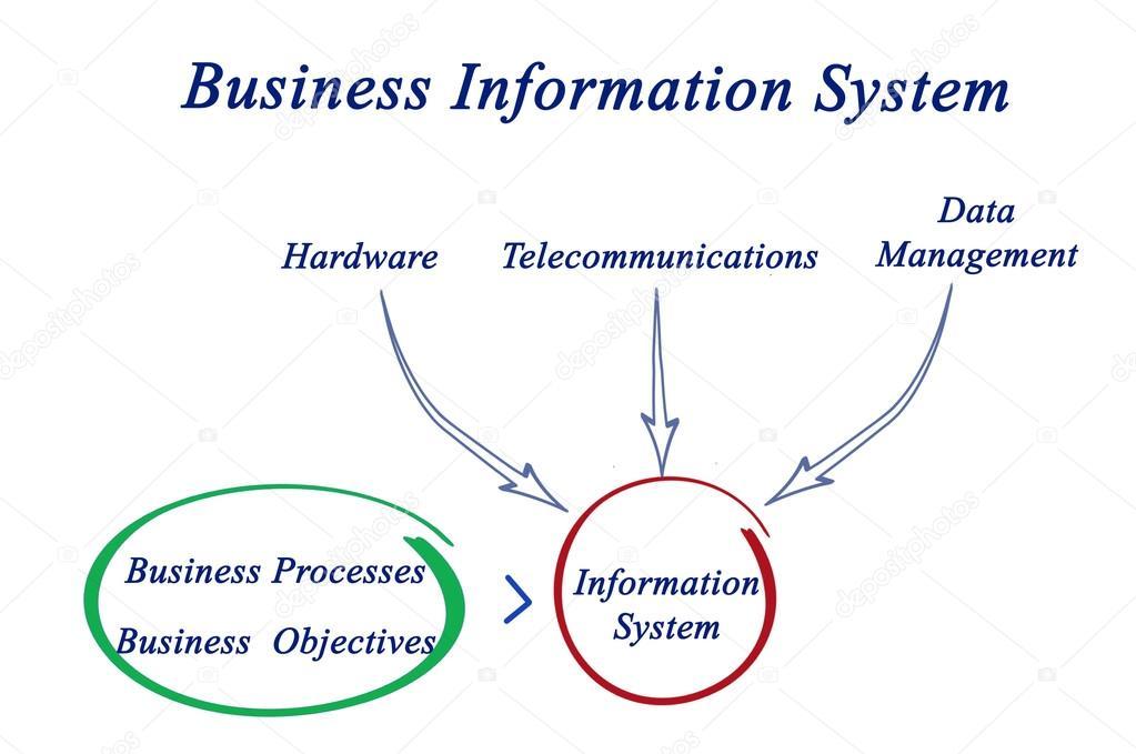 Diagram Of Business Information System Stock Photo Vaeenma
