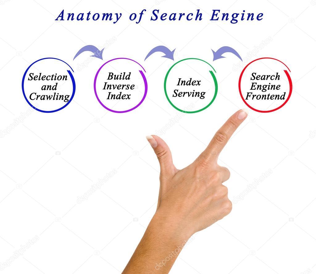 Diagrama de la anatomía del motor de búsqueda — Foto de stock ...