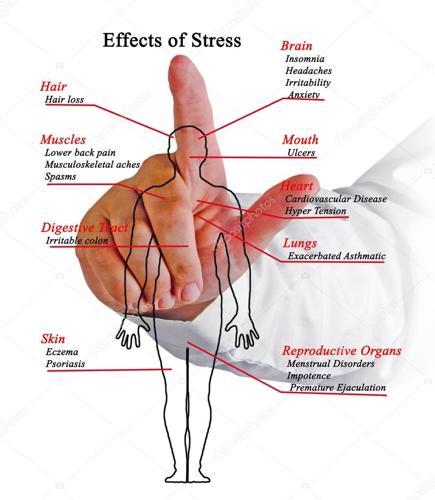 Diagram of Effects of Stress — Stock Photo © vaeenma #107354422
