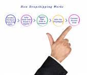 Fényképek Hogyan működik a Dropshipping rajza
