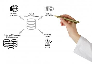 Product Information Management  Master Data