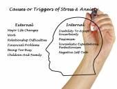 Fotografia Cause  trigger di Stress e ansia