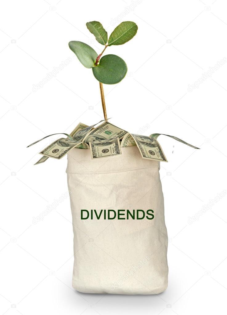 bag of dividends