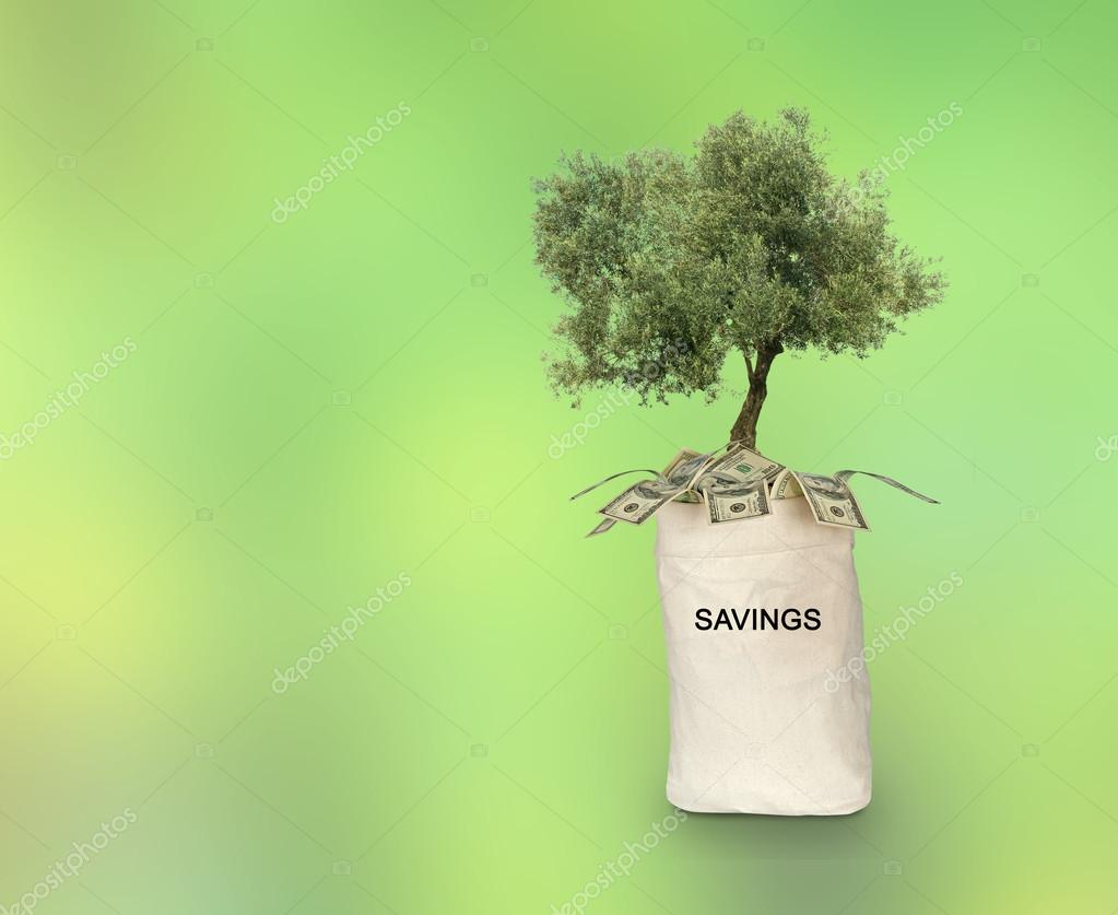Bag with savings