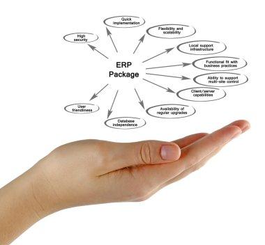 Diagram of  ERP Package