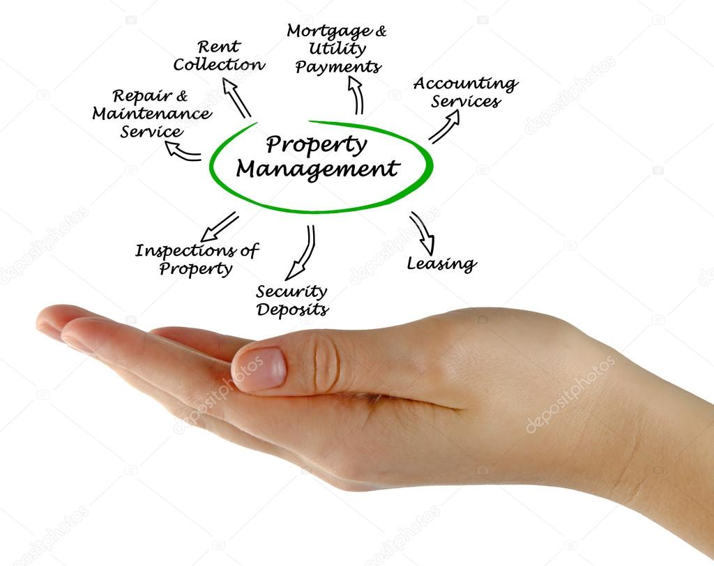 role of property management A condo's management company is responsible for maintaining the property and board members and management companies for role-board-members-management.