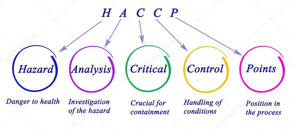 Diagrama de requisitos normativos de haccp stock photo vaeenma diagrama de requisitos normativos de haccp foto de vaeenma ccuart Gallery