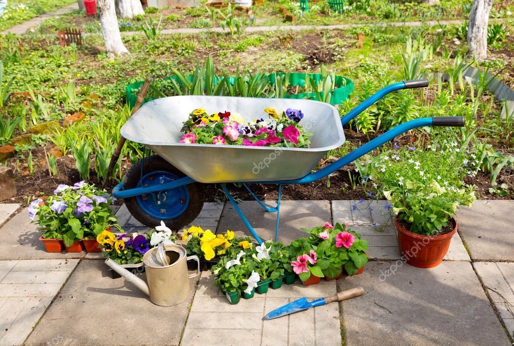 Extremamente carrinho de mão com flores em vasos e ferramentas de jardim  OE89