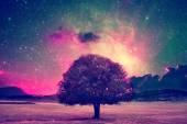 tündér fa táj
