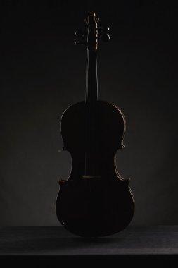 aged violin on dark background