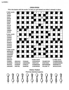 Puzzle page with word game and picture riddle