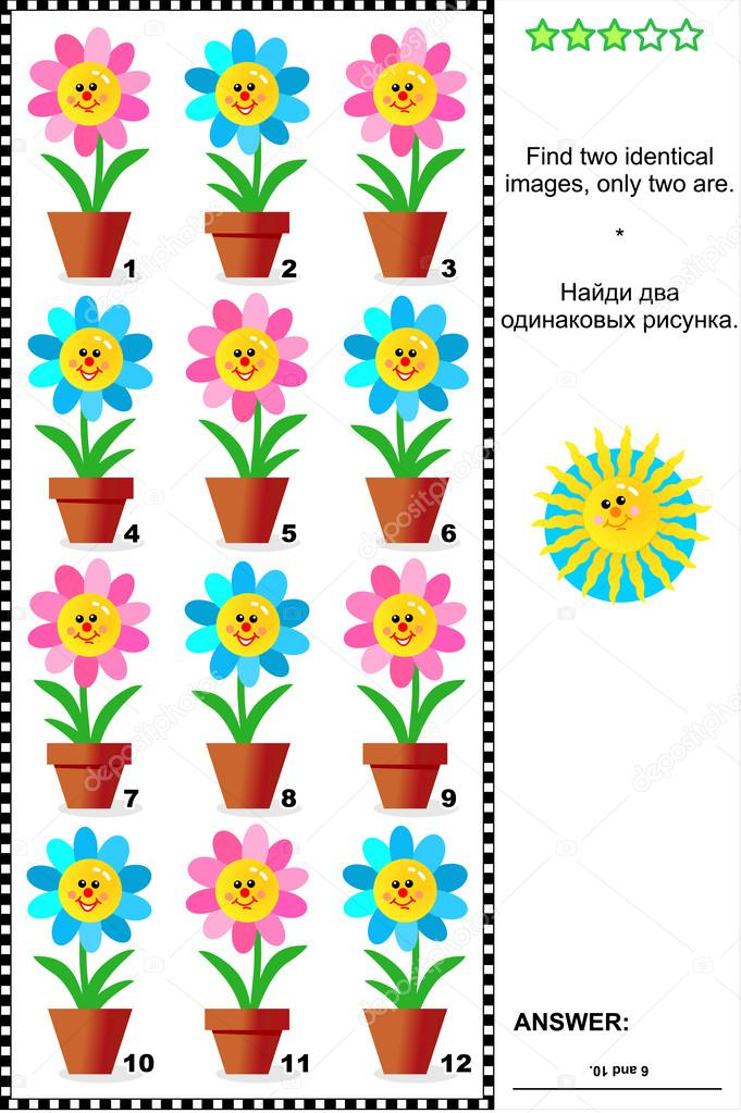 Saksı çiçekleri Ile Görsel Bilmece Stok Vektör Ratselmeister