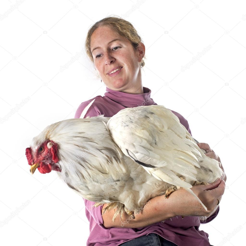 Två kycklingar med stora dicks