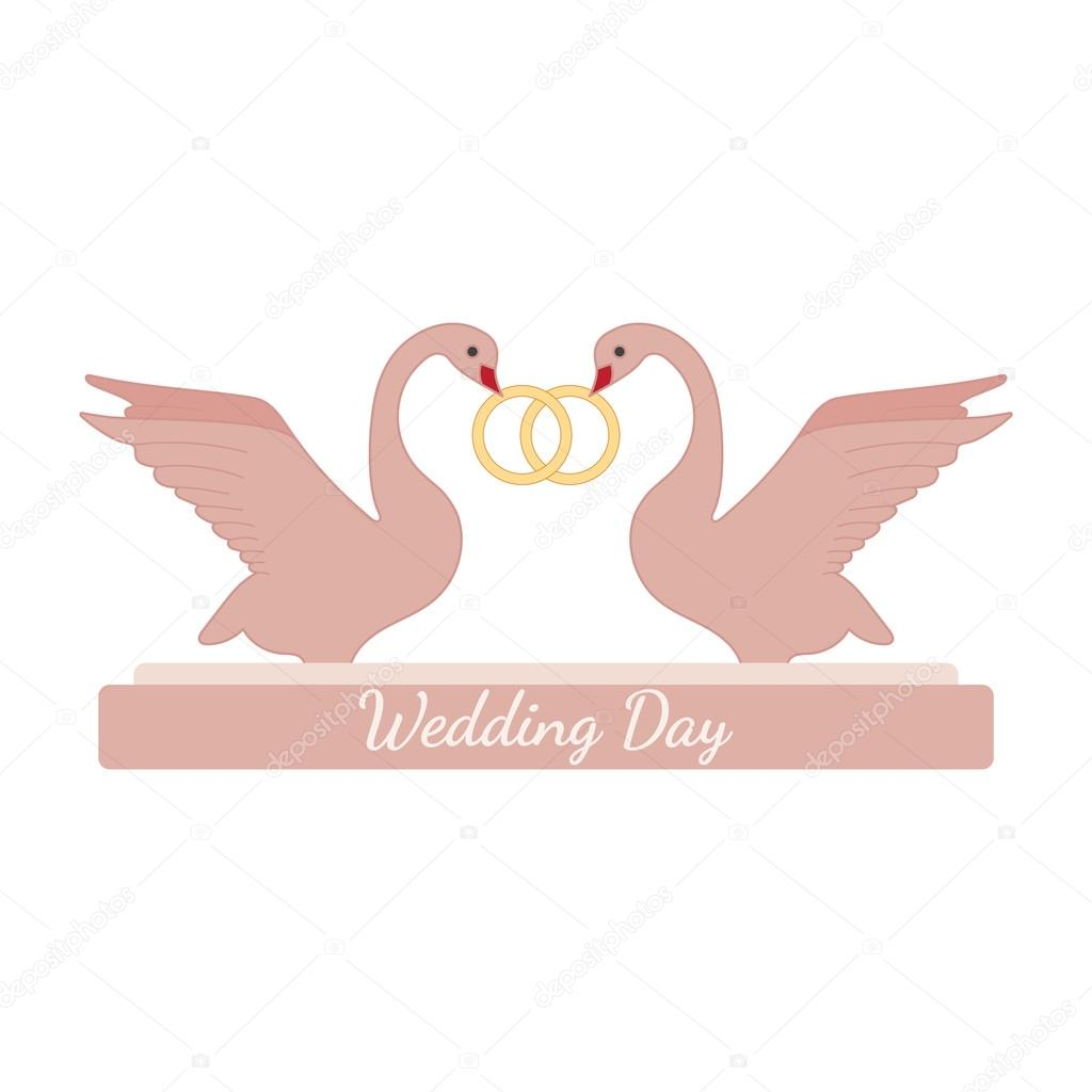 Wedding pink swans hold rings over white — Stock Vector © McAndy ...