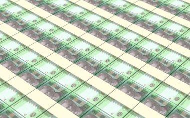 Ukrainian hryvnia bills stacks background.