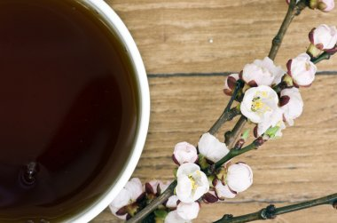 tea with apricot flowers and branches on table, top view