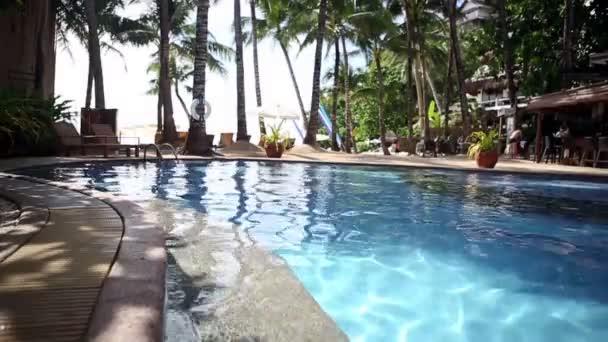 Pool im tropischen Badeparadies - Standbild-Video