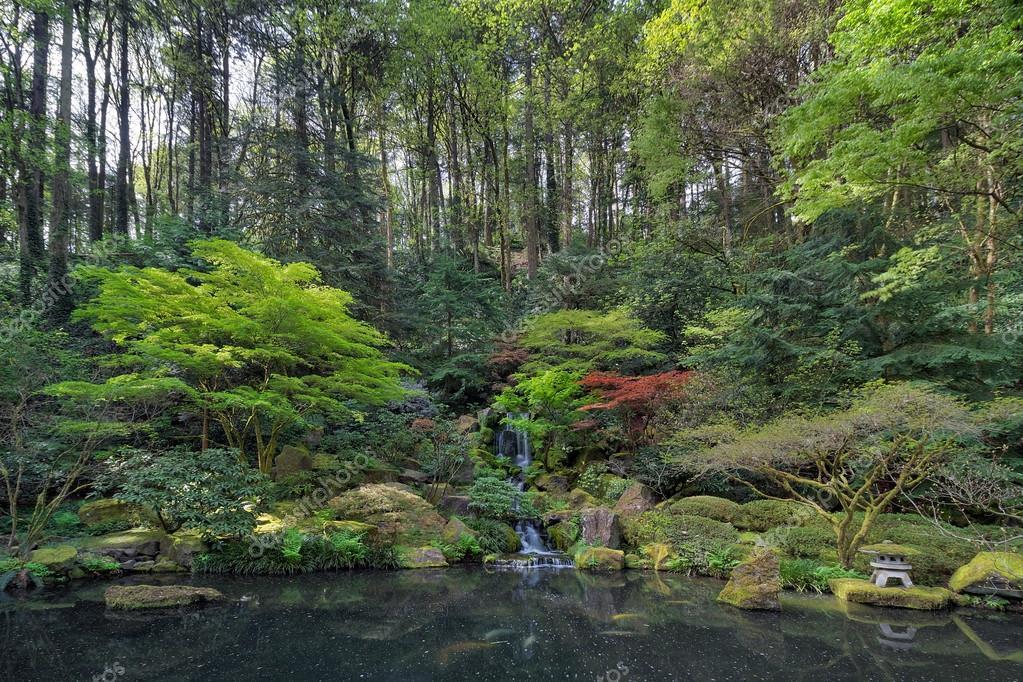 Cascade et bassin jardin japonais — Photographie davidgn © #105893106