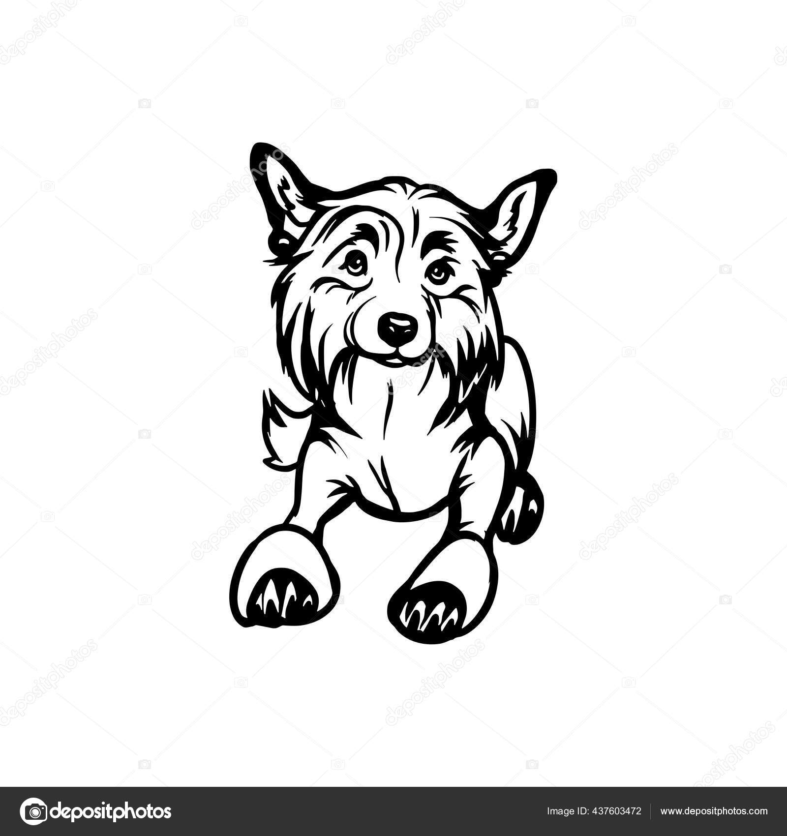 eps svg dxf INSTANT DIGITAL DOWNLOAD Vector Dog Silhouette Chinese Shar-Pei png