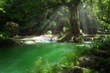 """Картина, постер, плакат, фотообои """"панорамный вид на красивый водопад и пруд в зеленой тропической среде цветы природа программа"""", артикул 102789320"""