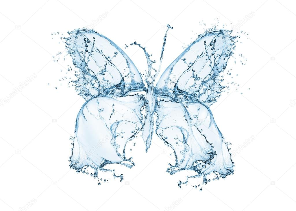 Butterfly water splash