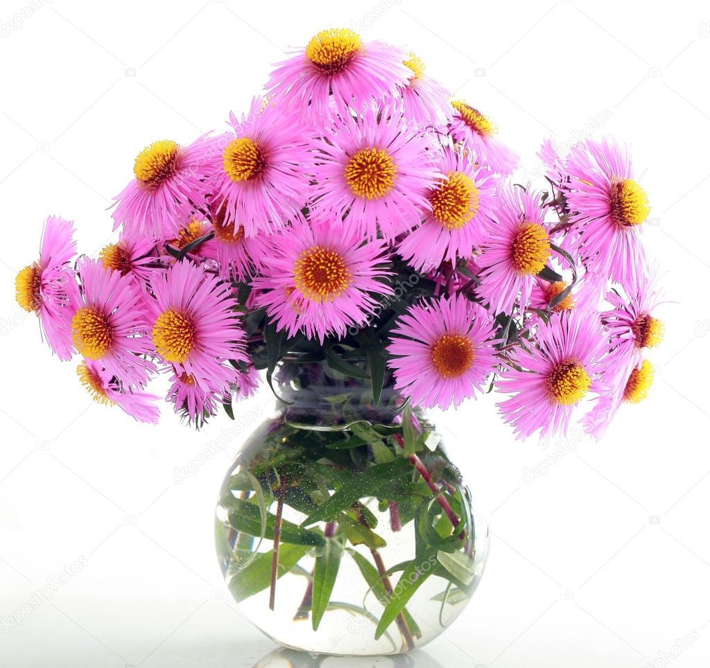 Mazzo di fiori autunnali giardino rosa foto stock for Immagini fiori autunnali