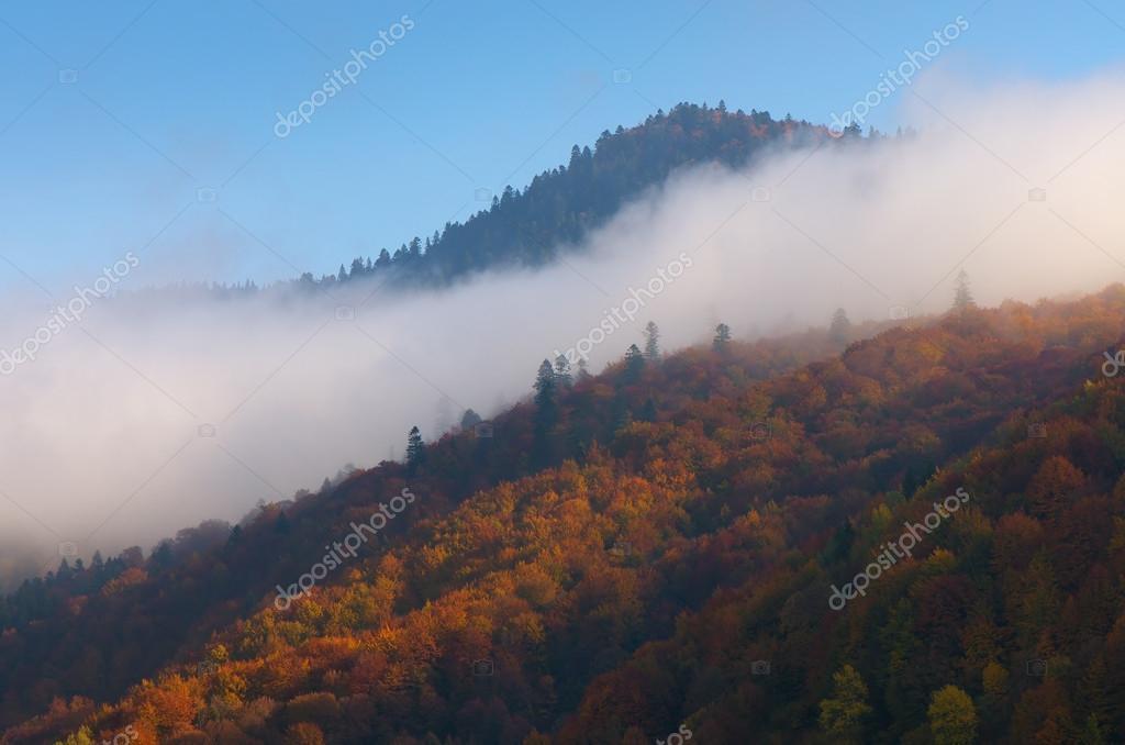 Cloud on the hillside